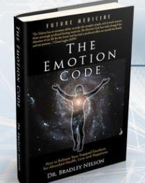 El Código de la emoción, Nikken, MagDuo