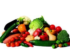 Nikken y la nutrición_700